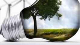Chute du cours des hydrocarbures : l'Algérie confrontée à la transition énergétique