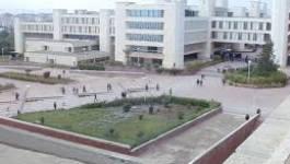 Oran : les étudiants du génie maritime en grève