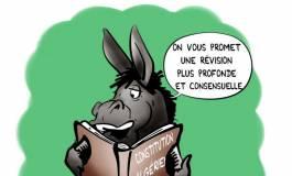 Projet de révision de la nouvelle Constitution