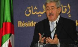 Tamazight : identité et langue de deuxième collège
