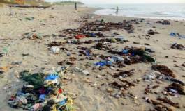 1.400 points noirs de rejet de déchets et des eaux usées sur le littoral algérien