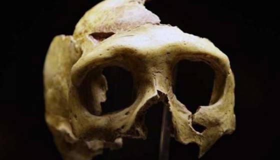 L'homme de Néandertal explorait déjà des grottes il y a 176.500 ans