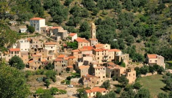 Corse : un lieu de culte musulman et une boucherie halal dégradés