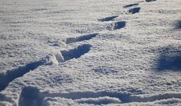 Avec des routes obstruées par la neige, les élèves ne pouvaient rejoindre les écoles.