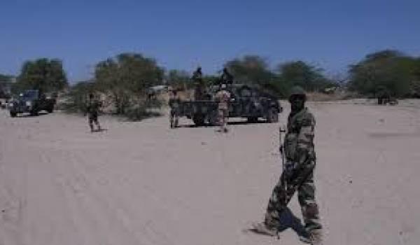 Le Niger en guerre contre Boko Haram.