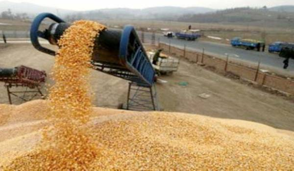 L'Algérie a réduit d'un quart ses importations de céréales