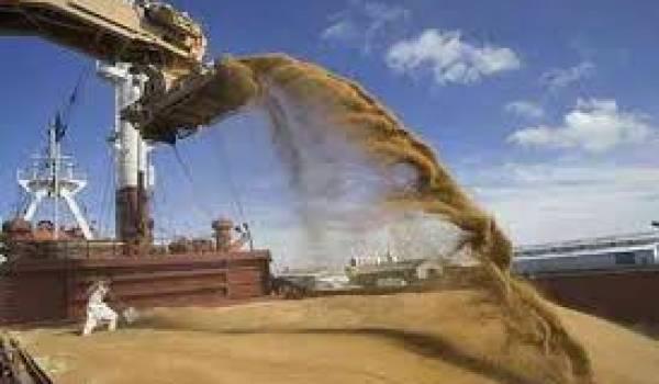 Les importations des céréales en hausse de plus de 7%