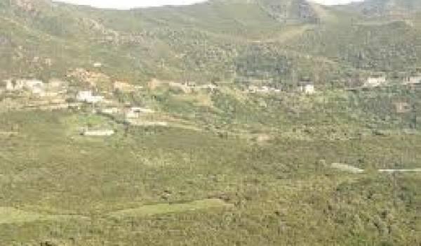 La région de Mizrana.