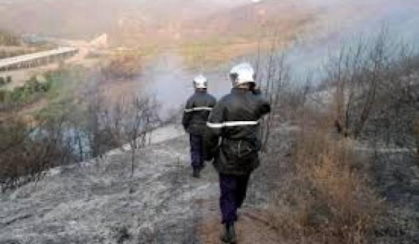 Toutes les centaines d'enquêtes n'ont abouti qu'à l'arrestation d'un seul pyromane ?