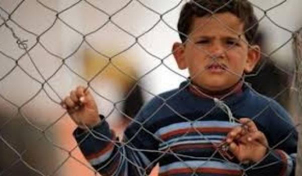 Snapap : l'arrivée massive de Syriens en Algérie, vérité ou intox ?
