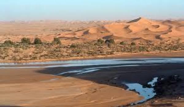 De nombreuses études montrent la riche diversité du Sahara algérien.