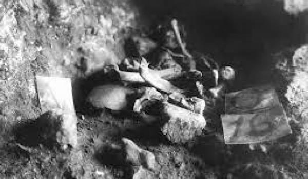 De nouvelles découvertes d'ossements sur un site préhistorique.