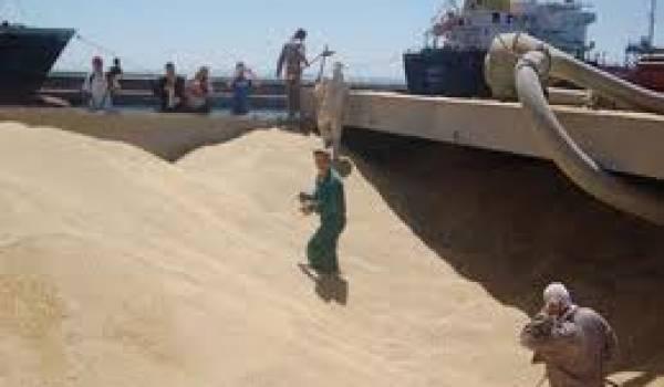 L'Algérie demeure très dépendante de l'étranger en matière de blé.