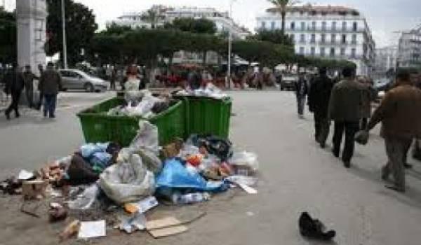 De nombreux points de dépôts d'ordures sauvages existent à Alger