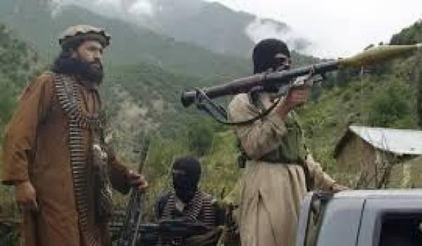 L'aviation pakistanaise a bombardé des bastions talibans.