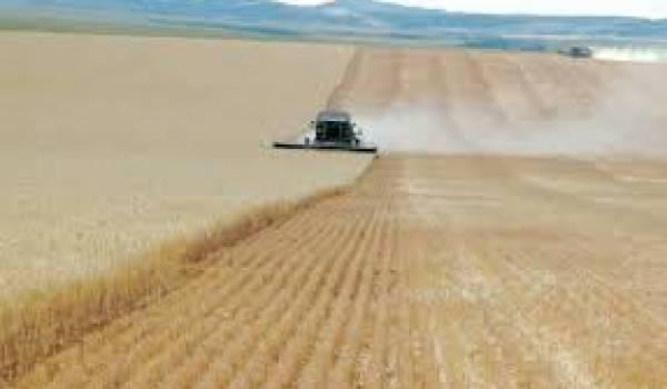 L'irrigation comme clé pour développer l'agriculture.