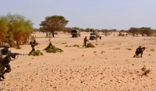L'Armée continue de réaliser des opérations pour neutraliser les réseaux de trafics.