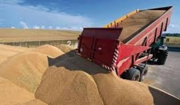 La facture des importations de céréales a augmenté de 10%