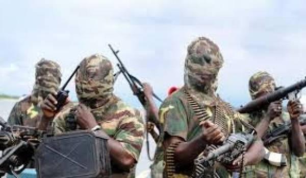 Boko Haram étend ses attaques au Niger.