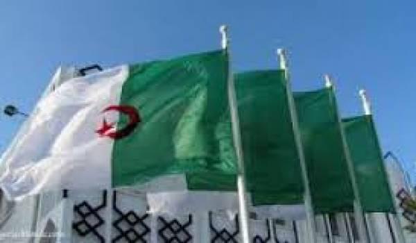 La diaspora algérienne s'organise