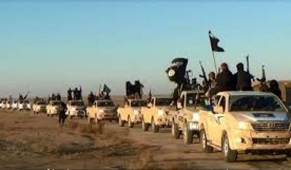 L'islamisme armé est né des décombres des dictatures des pays dits arabes
