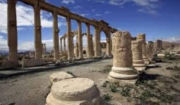 La cité Palmyre