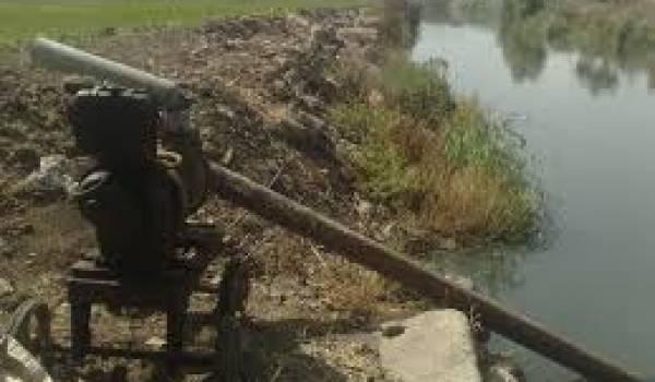 Des récoltes irriguées avec des eaux usées : qui arrêtera cet empoisonnement ?