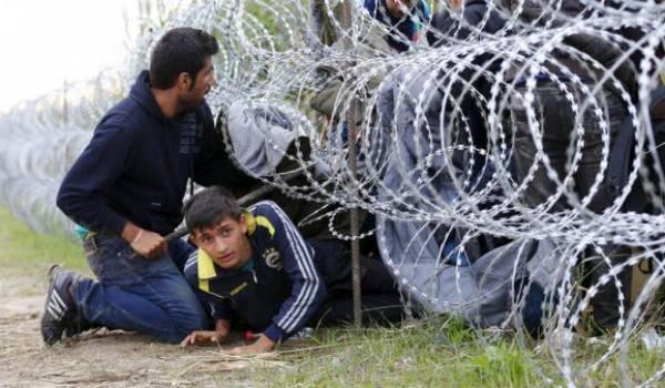 Illusoire mur de barbelés pour empêcher les migrants de traverser l'Europe.