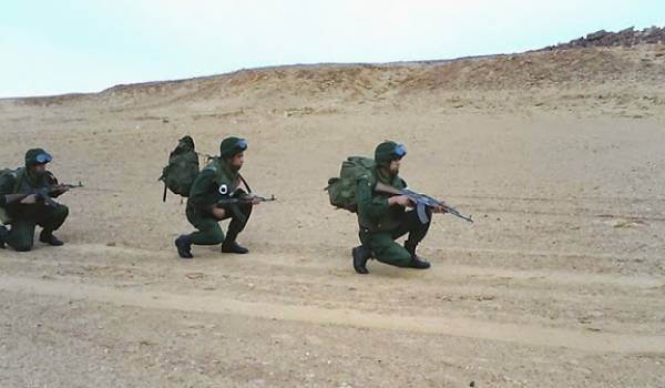 Un détachement de  l'ANP a mis en échec une tentative d'introduction de drogue en Algérie.