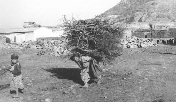 La femme algérinne, le souffre-douleur de l'homme