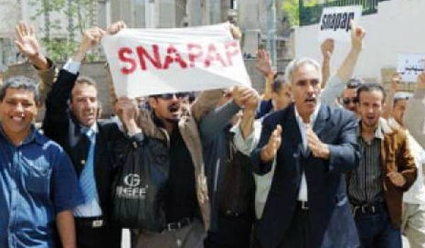 Le Snapap est souvent la cible d'intimidations.