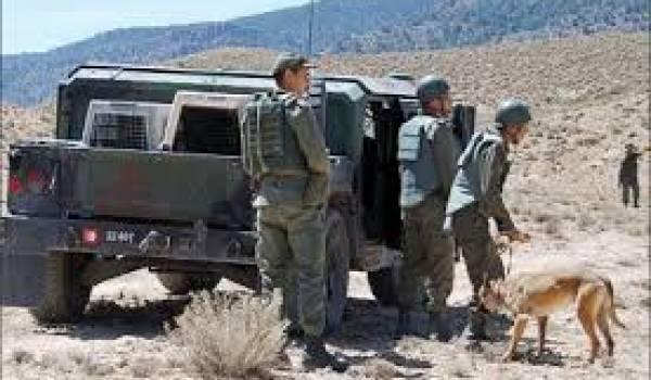 L'Anp a multiplié les opérations contre les terroristes