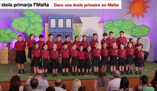 Le maltais, le parler algérien, une langue officielle transcrite en caractères latins (IV)