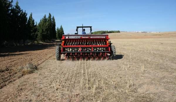 Les terres agricoles se raréfient en Algérie.