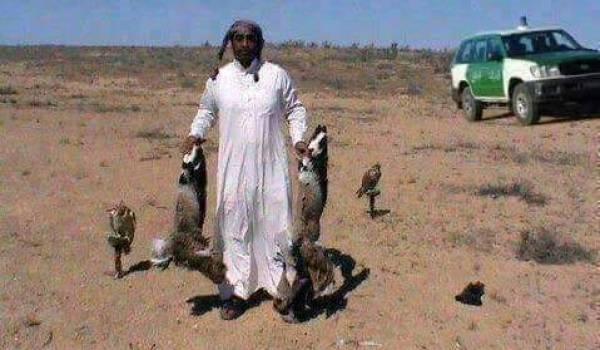 Les émirs ont fait de l'Algérie leur terrain de chasse grâce à leur ami Bouteflika.