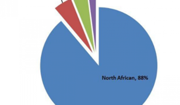 La génétique a tranché : des pays arabes pas si Arabes, l'ADN Nord-Africain présent sur quatre continents