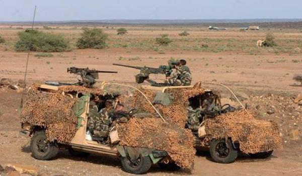 Une grande opération est menée depuis presque une semaine à El Adjiba, wilaya de Bouira.