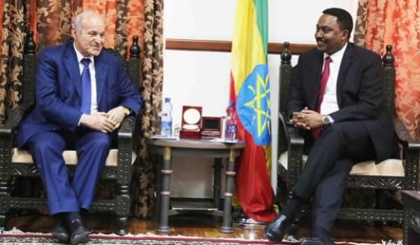 Issad Rebrab reçu par le ministre éthiopien des Affaires étrangères Workneh Gebeyehu.