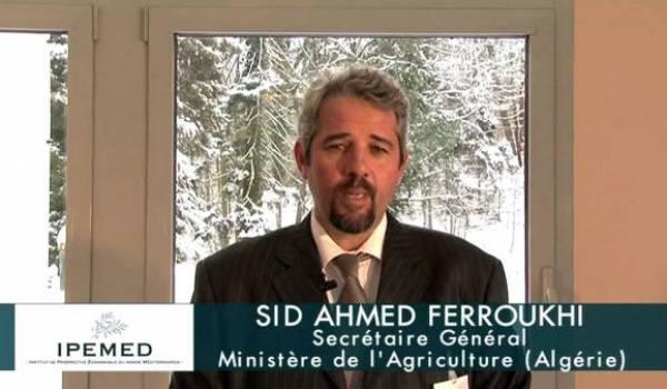 Sid Ahmed Feroukhi