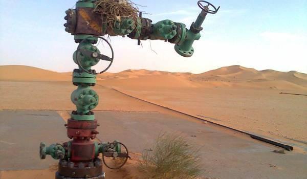 Les autorités n'ont pas anticipé en investissant dans de nouvelles explorations pétrolières.