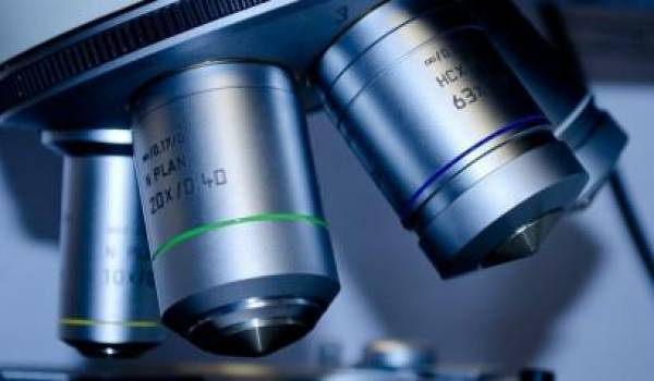 La recherche universitaire est un voeu pieux en Algérie