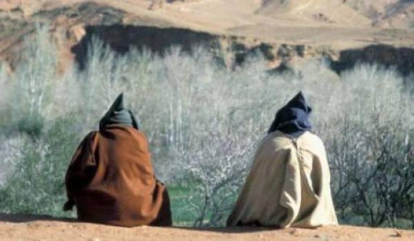 Pour en finir avec le berbérisme : la voie de l'amazighologie (II)