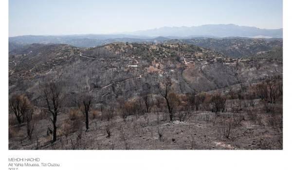Plus 150 incendies enregistrés en 24 heures en Algérie