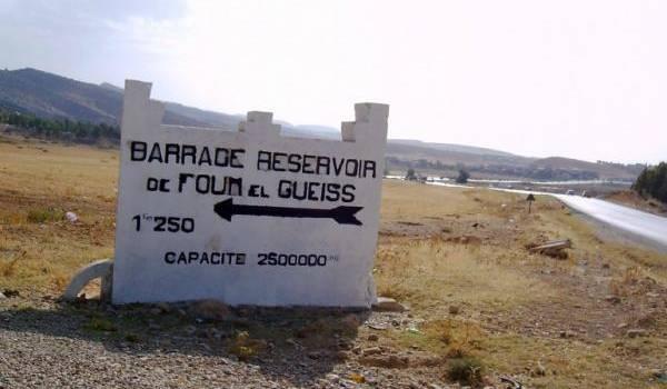 Barrage de Foum El Gueiss (Khenchela) : les travaux de dévasement abandonnés