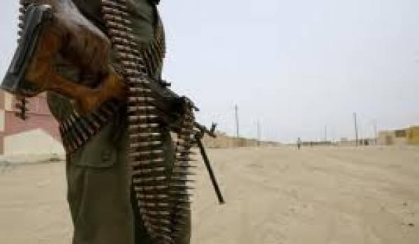 Aqmi et Boko Haram tentent de déstabiliser la sous-région.