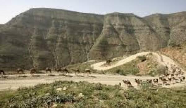 Les touristes étaient aux frontières avec l'Erythrée